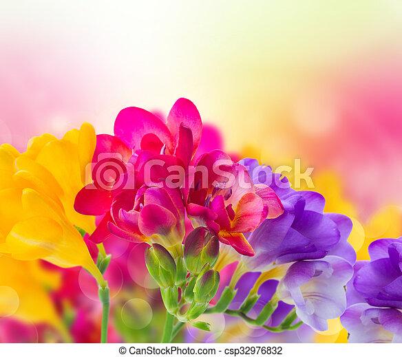 Blue pink and yellow freesia flowers on garden bokeh stock blue pink and yellow freesia flowers csp32976832 mightylinksfo