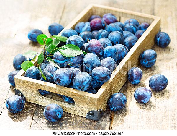 blue plums - csp29792897