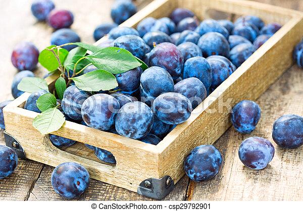blue plums - csp29792901