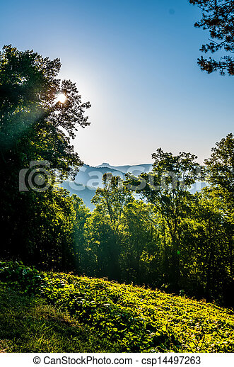 blue ridge parkway early morning - csp14497263