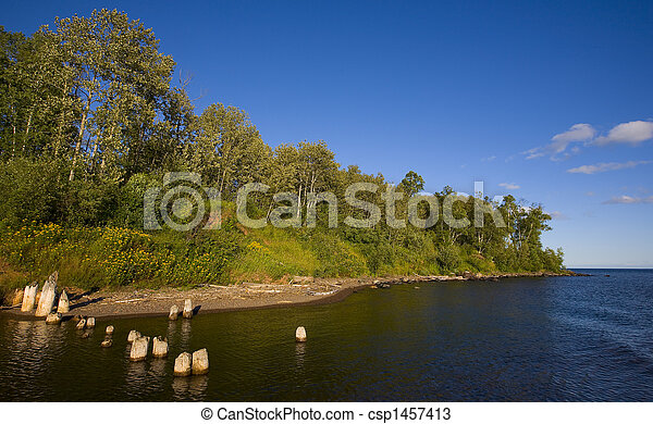 Blue River Mouth and Green Forest - csp1457413