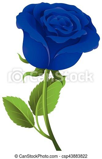 Blue Rose On Green Stem Illustration