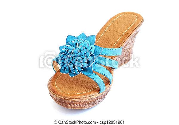 Blue shoe - csp12051961