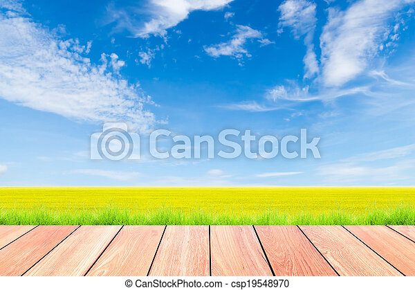blue sky and green rice field with plank wood foreground - csp19548970