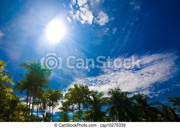 Blue sky with white cloud. - csp10275339