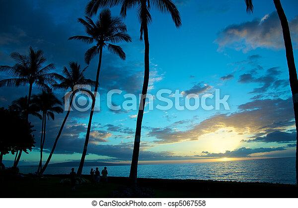 Blue tropical sunset - csp5067558