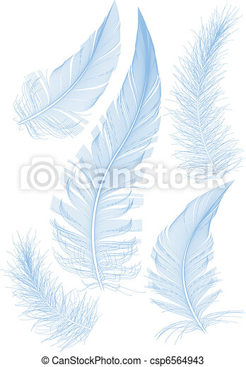 blue vector feathers - csp6564943