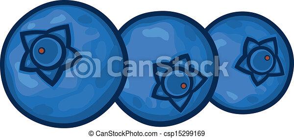 blueberries  - csp15299169