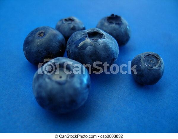 Blueberries II - csp0003832