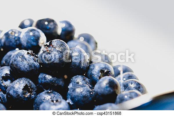 blueberries - csp43151868