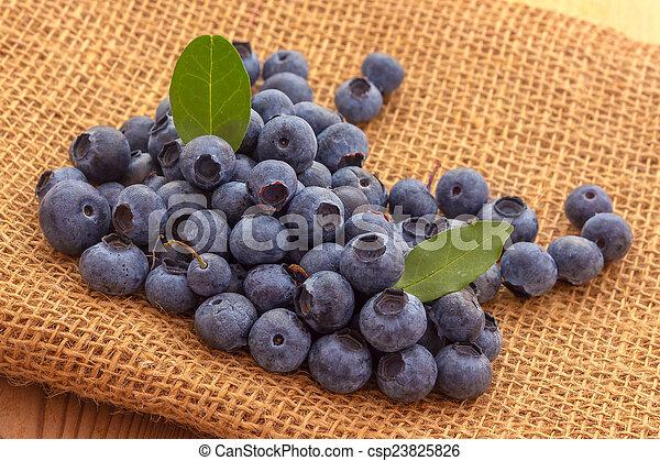 Blueberries - csp23825826
