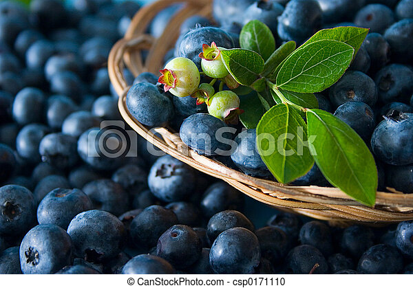 Blueberries - csp0171110