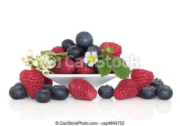 Blueberry and Raspberry Fruit - csp4894752