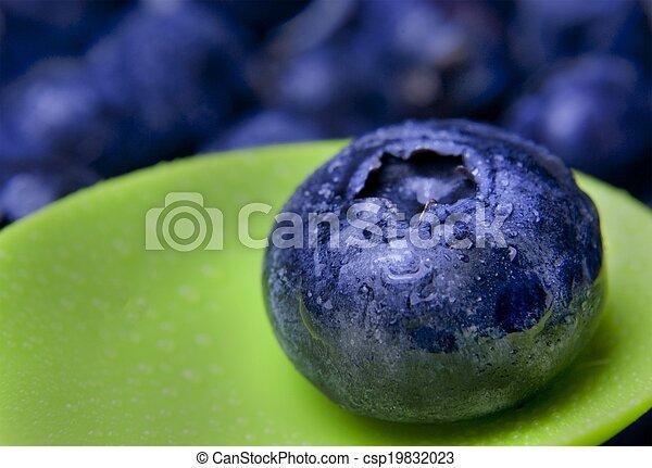 Blueberry close up - csp19832023