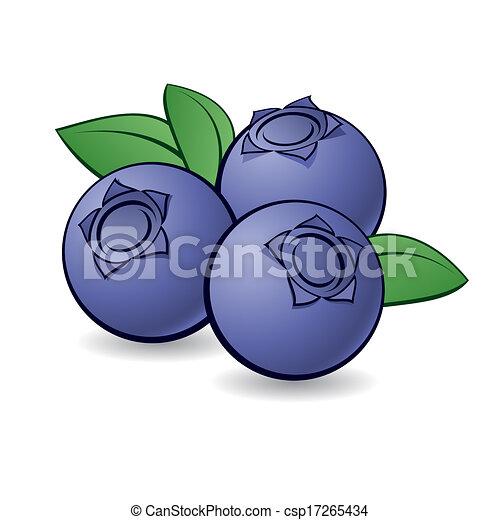 blueberry., dessin animé - csp17265434