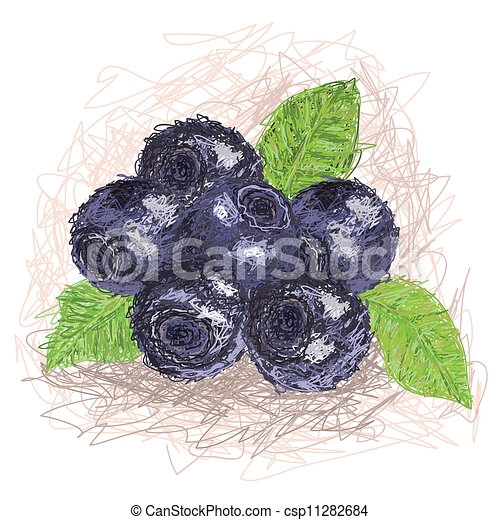 blueberry - csp11282684