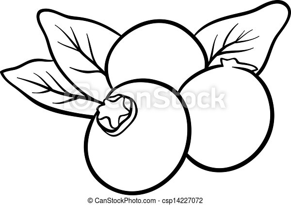 blueberry fruits for coloring book - csp14227072