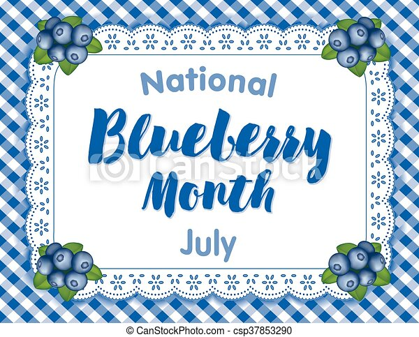 Blueberry Month, July USA - csp37853290