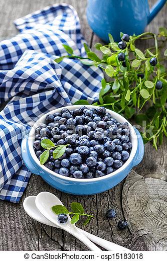 Blueberry - csp15183018