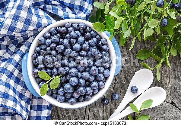 Blueberry - csp15183073
