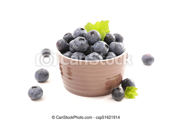 blueberry - csp51621914
