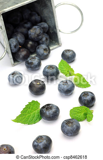 blueberry - csp8462618