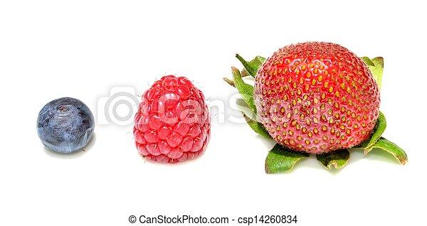 Blueberry, raspberry and strawberry - csp14260834