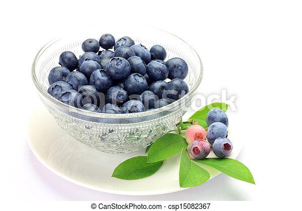 blueberry - csp15082367