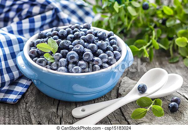 Blueberry - csp15183024