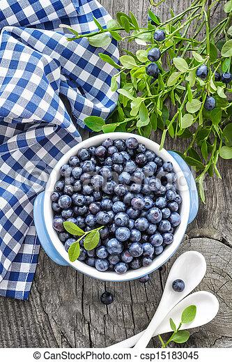 Blueberry - csp15183045