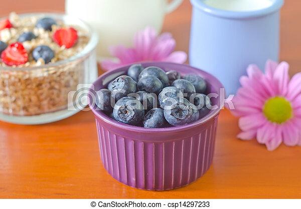 blueberry - csp14297233