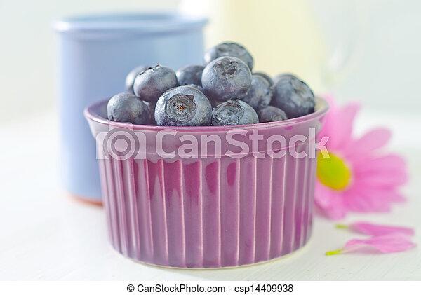 blueberry - csp14409938