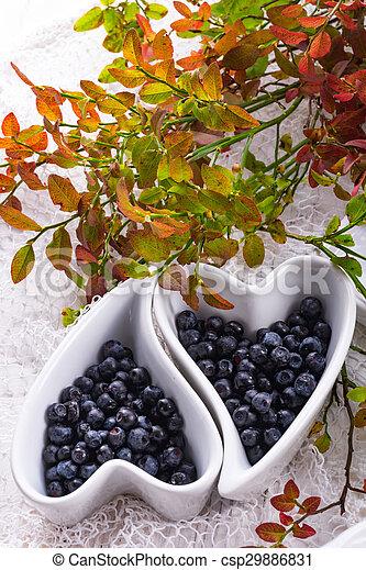 Blueberry - csp29886831