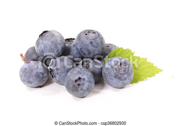 blueberry - csp36802930
