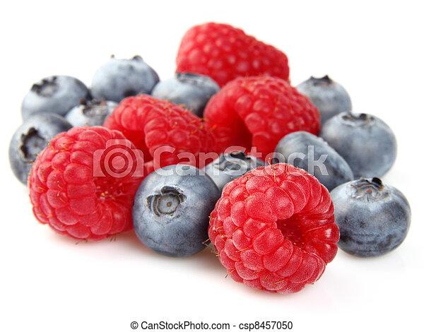 Blueberry with raspberry - csp8457050