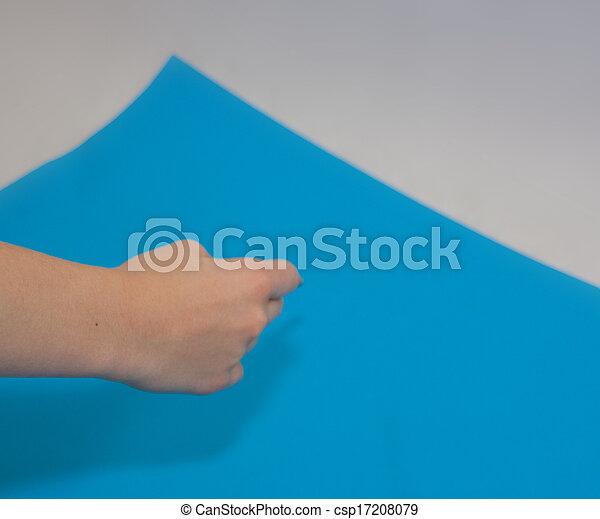Blueprint - csp17208079