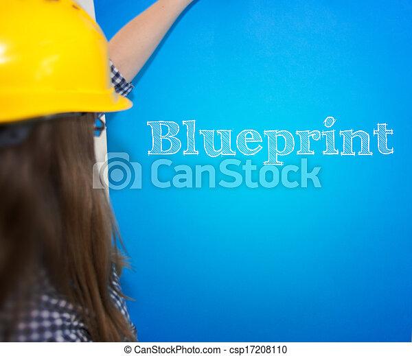 Blueprint - csp17208110