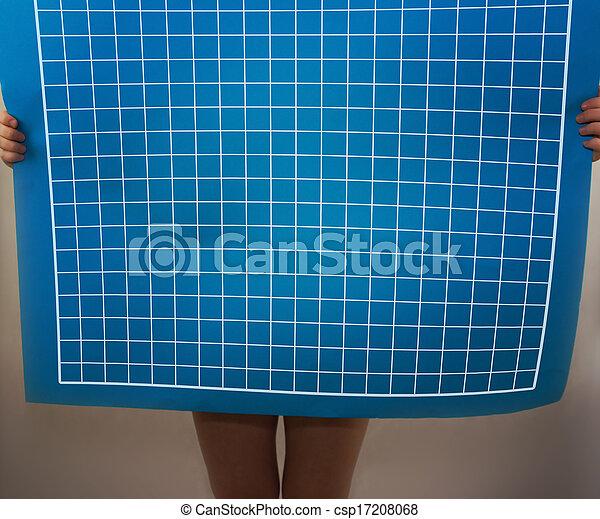 Blueprint - csp17208068