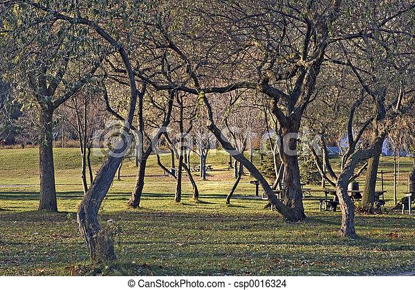 Bluffers Park 1 - csp0016324