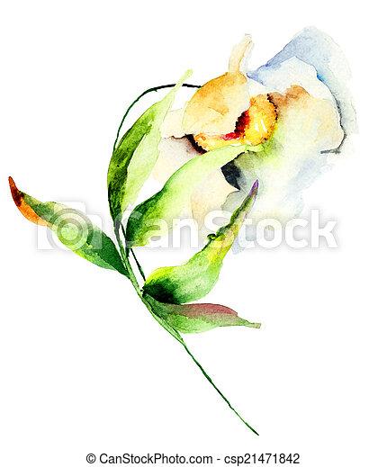 Dekorative weiße Blume - csp21471842
