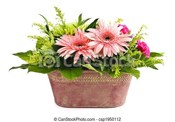 Isolierte Blumenvereinbarung - csp1950112