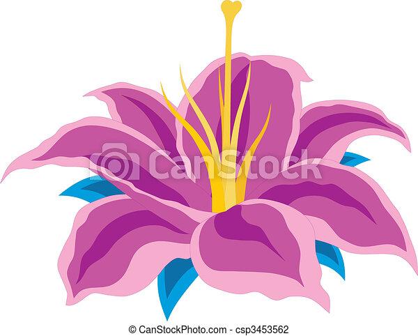 Blume - csp3453562