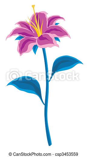 Blume - csp3453559