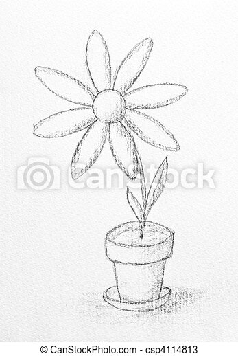 Blumen Bilder Gemalt Bleistift