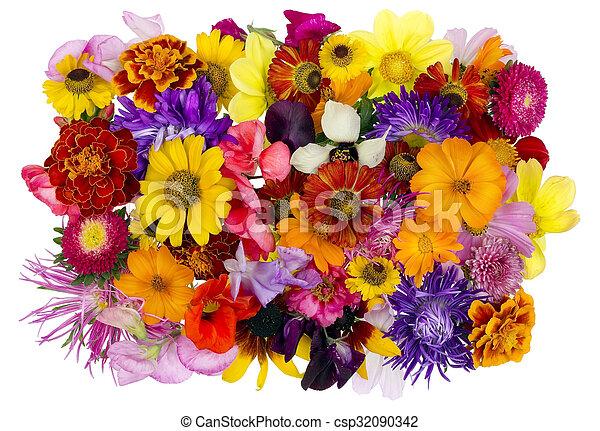 Berühmt Blumen-, collage, chaos, august. Sommer, august, collage, abstrakt #JA_39