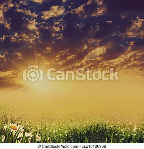 blumen, dramatisch, landschaftsbild, schoenheit, gänseblumen - csp18100966