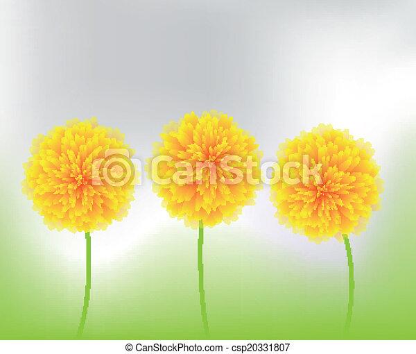 blumen, gelber , natur - csp20331807
