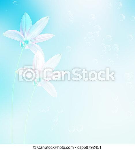 blumen, lilie, bunte - csp58792451