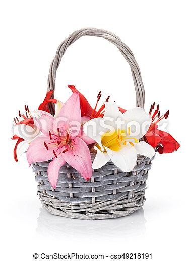 blumen, lilie, bunte - csp49218191