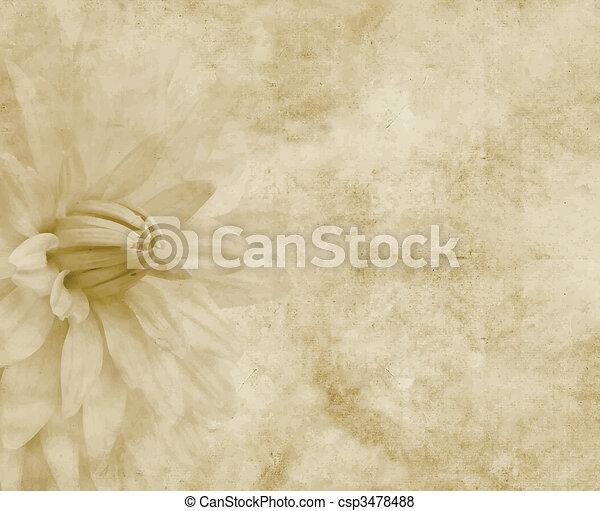 Blumen-, papier, oder, pergament. Blume, groß, pergamentpapier ...